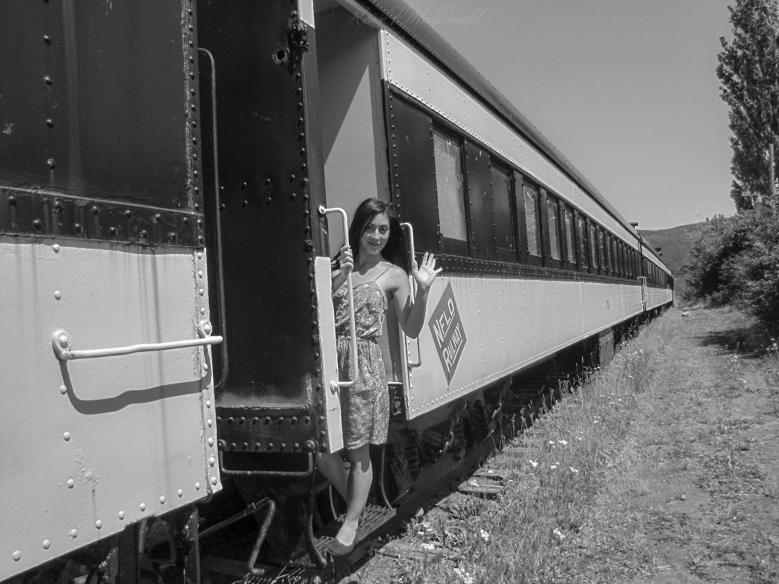 NFLD_Railway