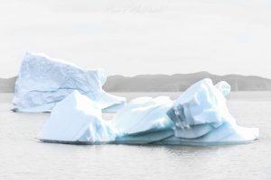 TOI_Icebergs_Twillingate